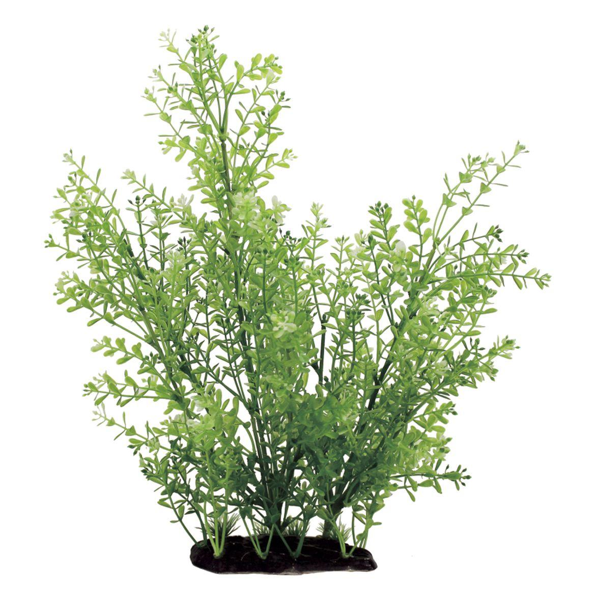 Растение для аквариума ArtUniq Ротала, высота 35 смART-1130103Растение для аквариума ArtUniq Ротала, высота 35 см