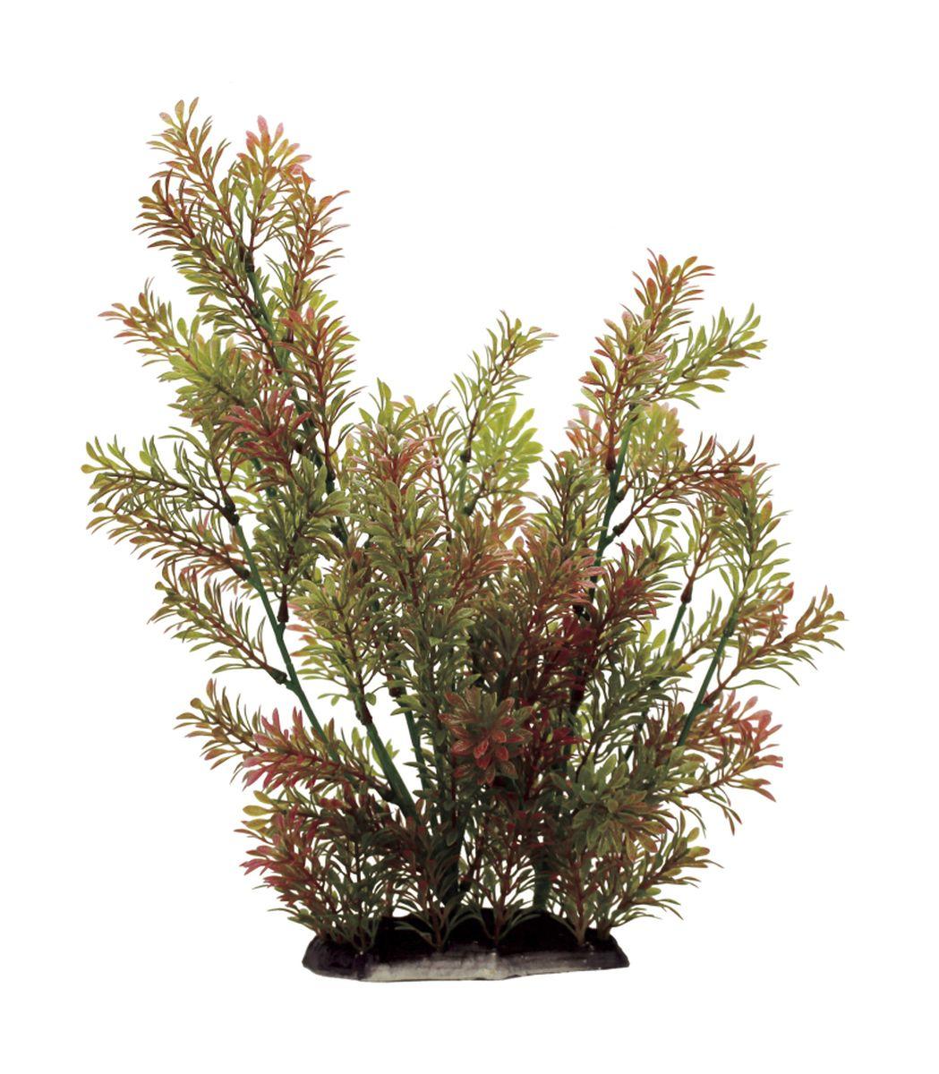 Растение для аквариума ArtUniq Ротала индийская, высота 35 смART-1130106Растение для аквариума ArtUniq Ротала индийская, высота 35 см