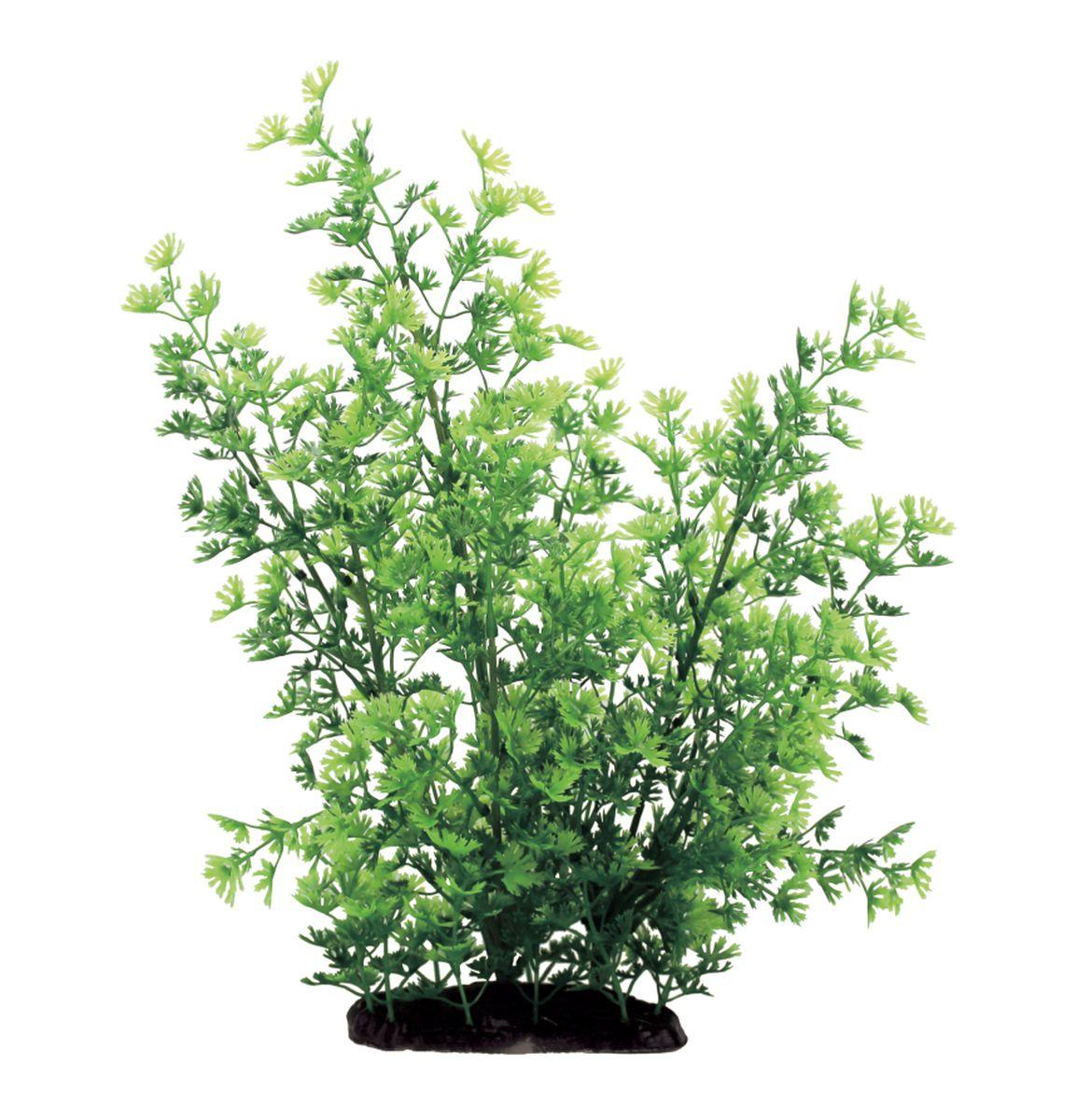 Растение для аквариума ArtUniq Лютик водный, высота 35 смART-1130107Растение для аквариума ArtUniq Лютик водный, высота 35 см