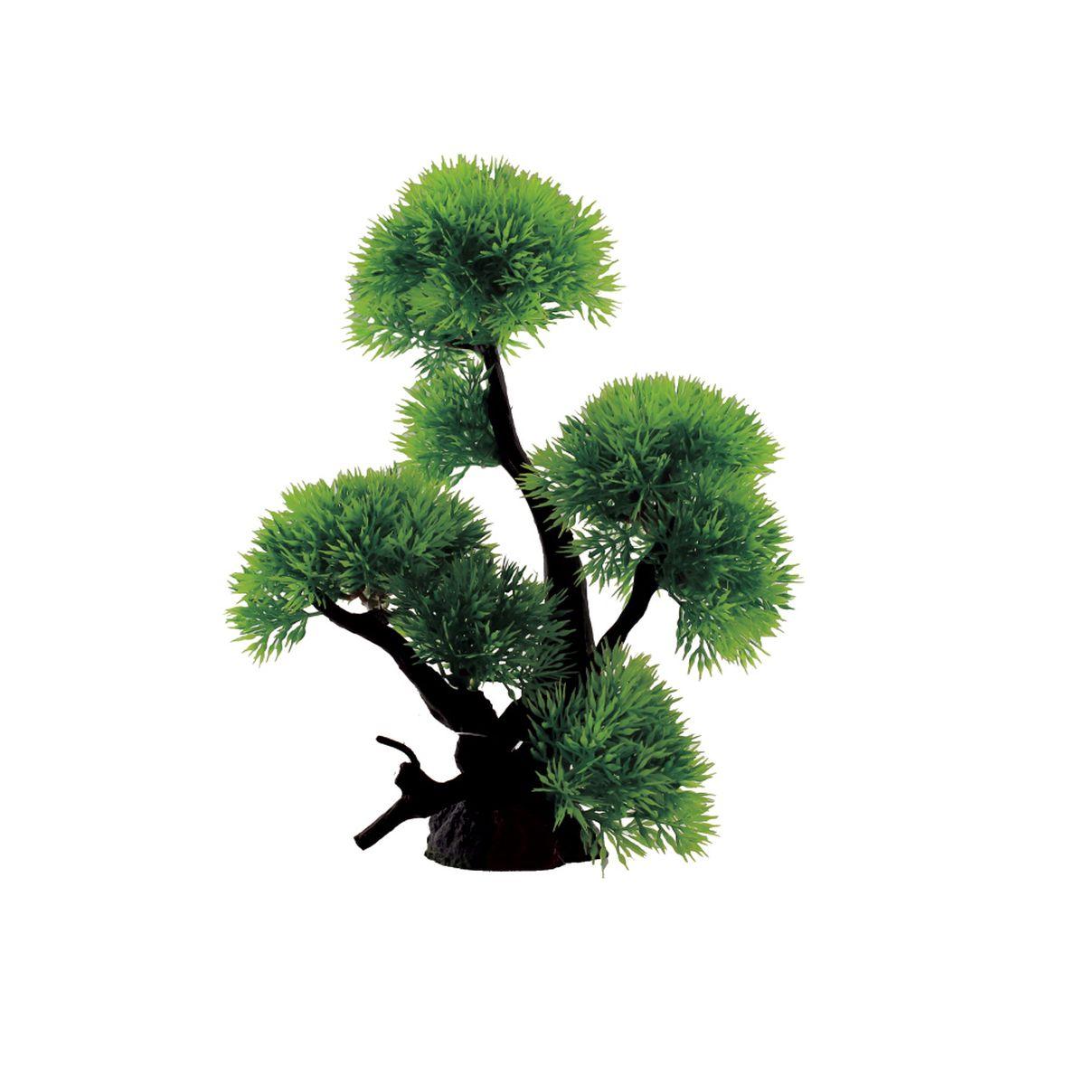 Композиция из растений для аквариума ArtUniq Риччия, 18 x 11 x 24 смART-1130306Композиция из растений для аквариума ArtUniq Риччия, 18 x 11 x 24 см