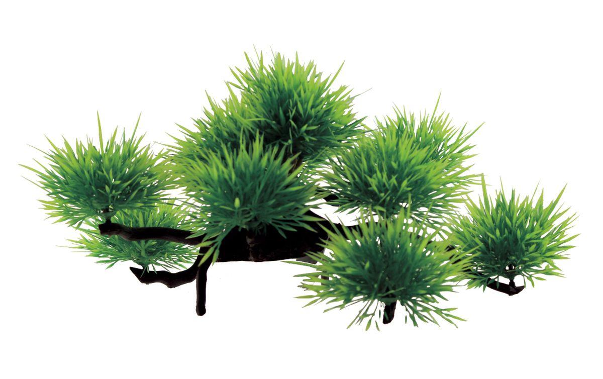 Композиция из растений для аквариума ArtUniq Лилеопсис, 32 x 19 x 16 смART-1130307Композиция из растений для аквариума ArtUniq Лилеопсис, 32 x 19 x 16 см