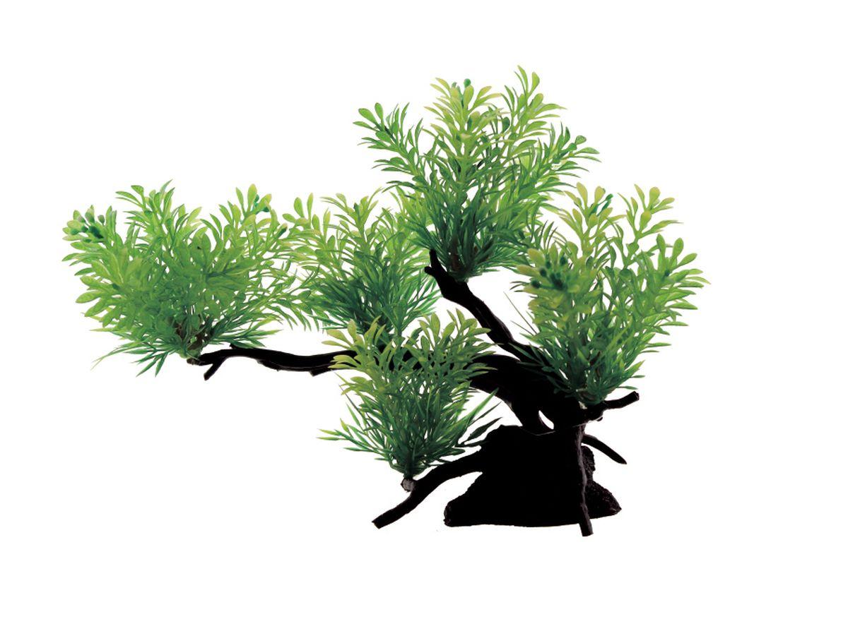 Композиция из растений для аквариума ArtUniq Ротала зеленая, 28 x 12 x 21 смART-1130308Композиция из растений для аквариума ArtUniq Ротала зеленая, 28 x 12 x 21 см