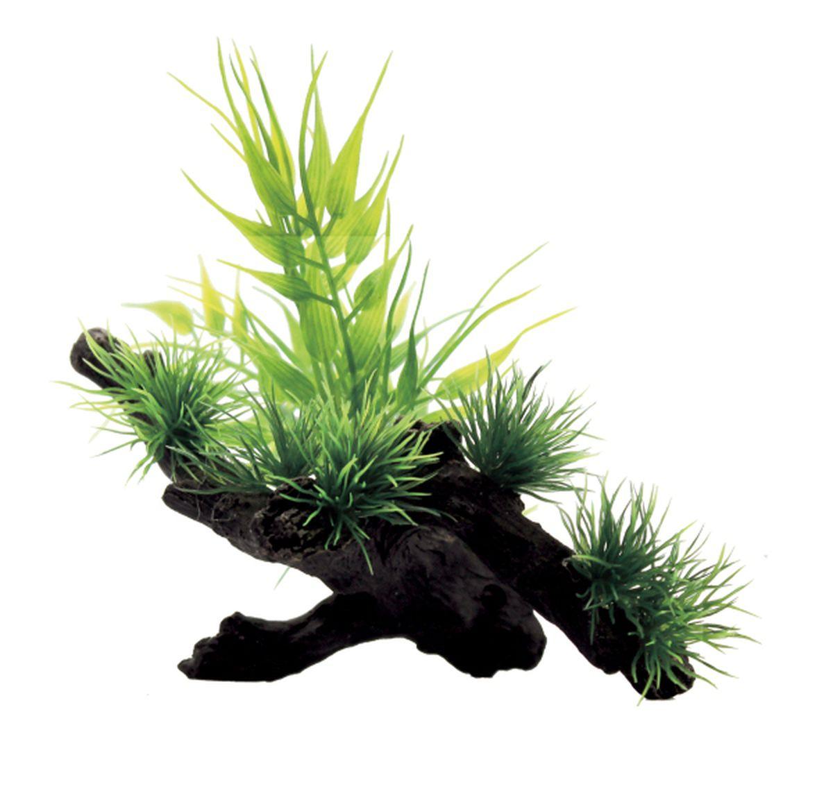Композиция из растений для аквариума ArtUniq Бамбук на коряге, 15 x 12 x 12 смART-1130407Композиция из растений для аквариума ArtUniq Бамбук на коряге, 15 x 12 x 12 см