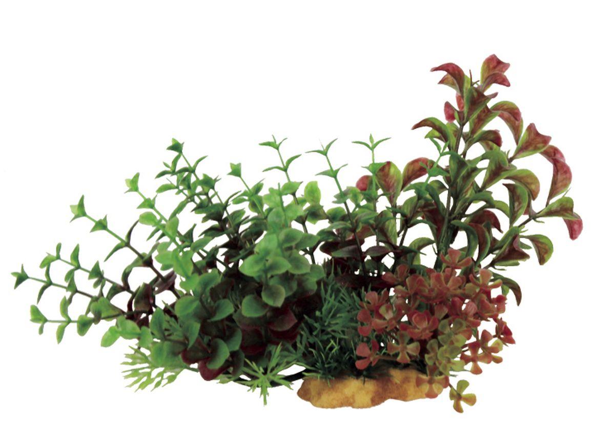 Композиция из растений для аквариума ArtUniq Людвигия и Бакопа на ветке, 20 x 10 x 15 смART-1130502Композиция из растений для аквариума ArtUniq Людвигия и Бакопа на ветке, 20 x 10 x 15 см