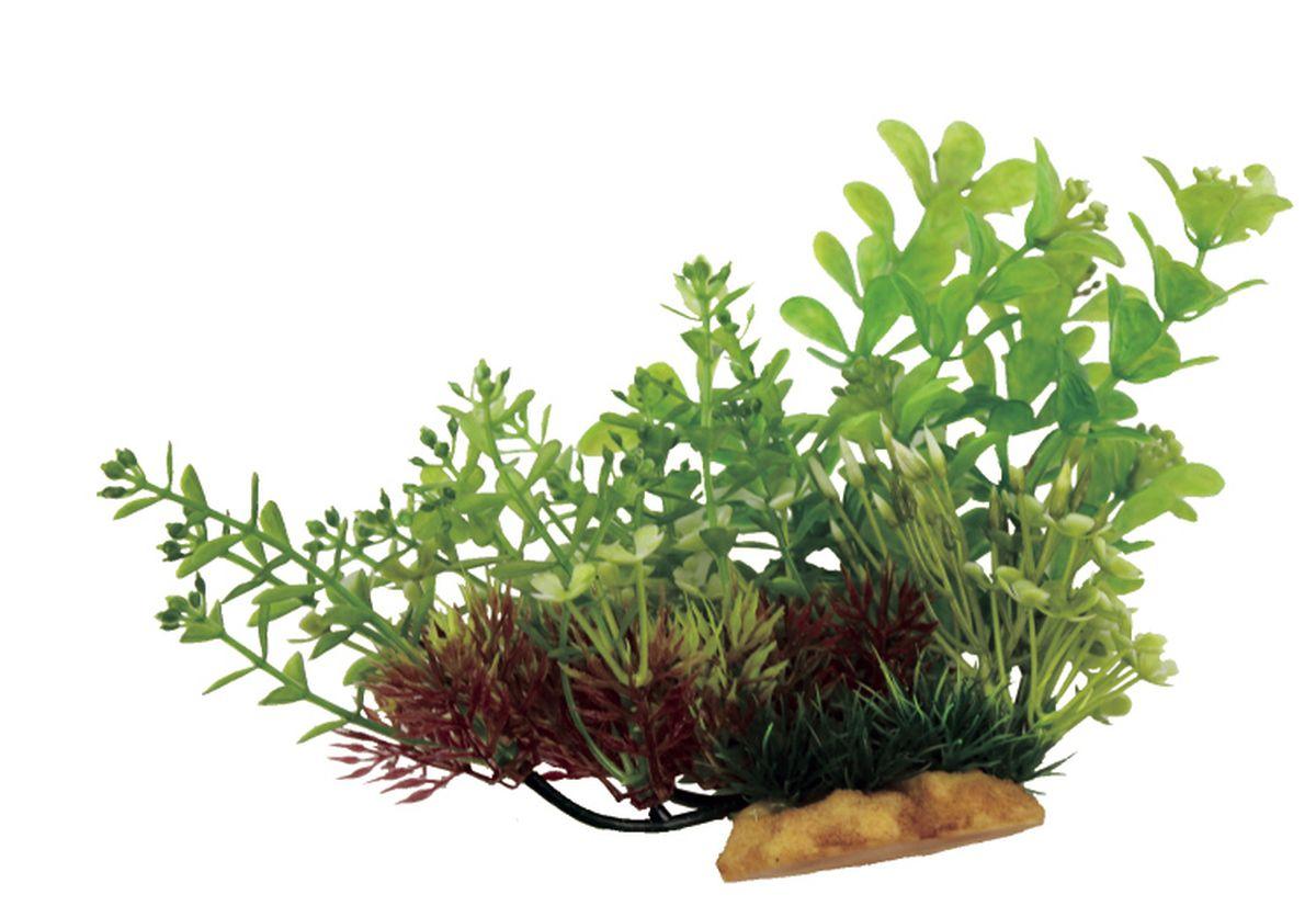 Композиция из растений для аквариума ArtUniq Людвигия и Ротала на ветке, 20 x 10 x 15 смART-1130504Композиция из растений для аквариума ArtUniq Людвигия и Ротала на ветке, 20 x 10 x 15 см