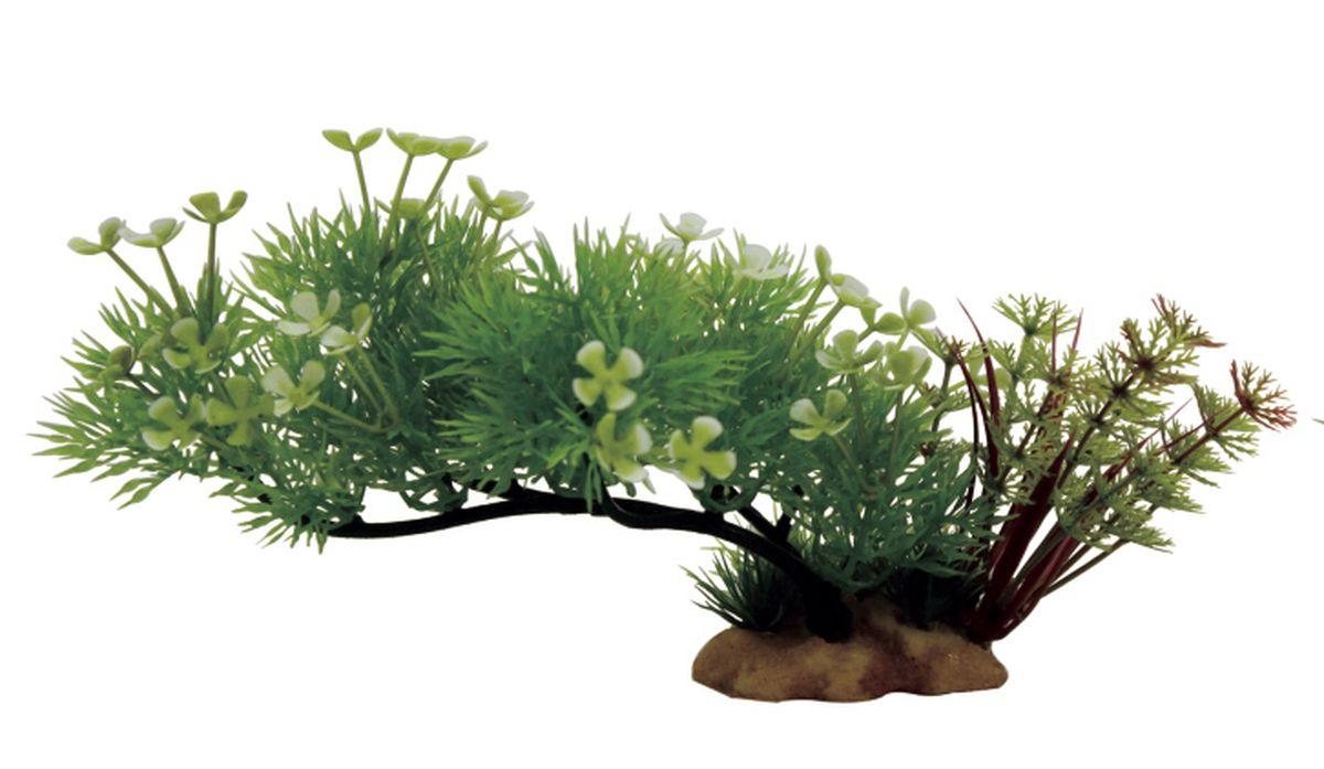 Композиция из растений для аквариума ArtUniq Ситняг цветущий на ветке, 20 x 10 x 10 смART-1130508Композиция из растений для аквариума ArtUniq Ситняг цветущий на ветке, 20 x 10 x 10 см