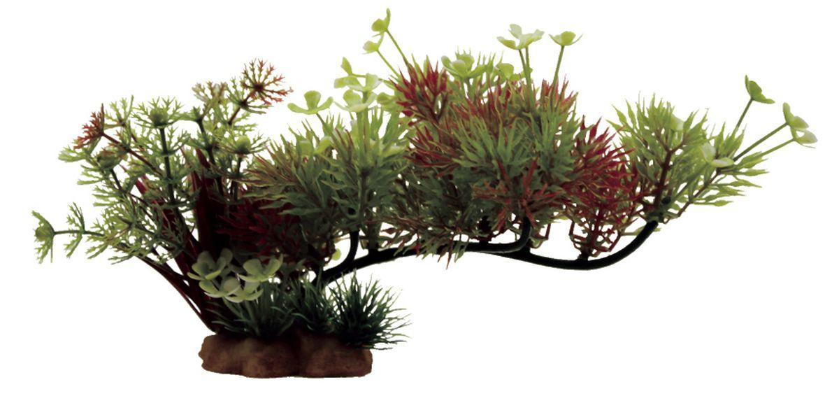 Композиция из растений для аквариума ArtUniq Роголистник на ветке, 23 x 10 x 12 смART-1130510Композиция из растений для аквариума ArtUniq Роголистник на ветке, 23 x 10 x 12 см