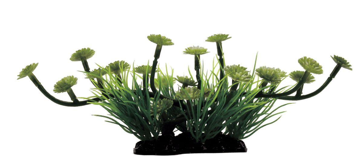 Растение для аквариума ArtUniq Марсилия, 23 x 11 x 10 смART-1130511Растение для аквариума ArtUniq Марсилия, 23 x 11 x 10 см