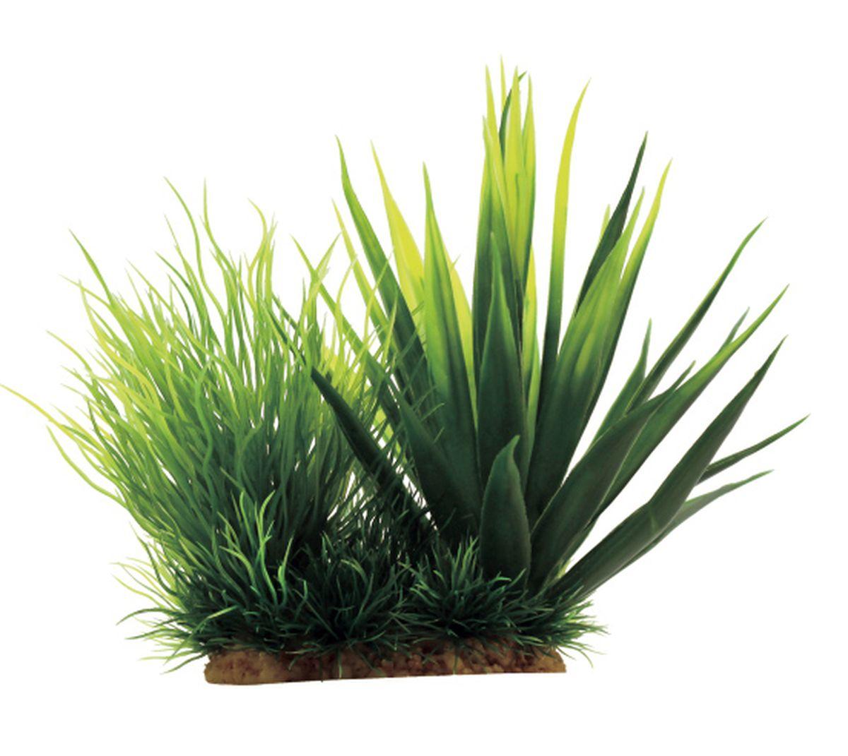 Растение для аквариума ArtUniq Агава, 18 x 12 x 16 смART-1130603Растение для аквариума ArtUniq Агава, 18 x 12 x 16 см