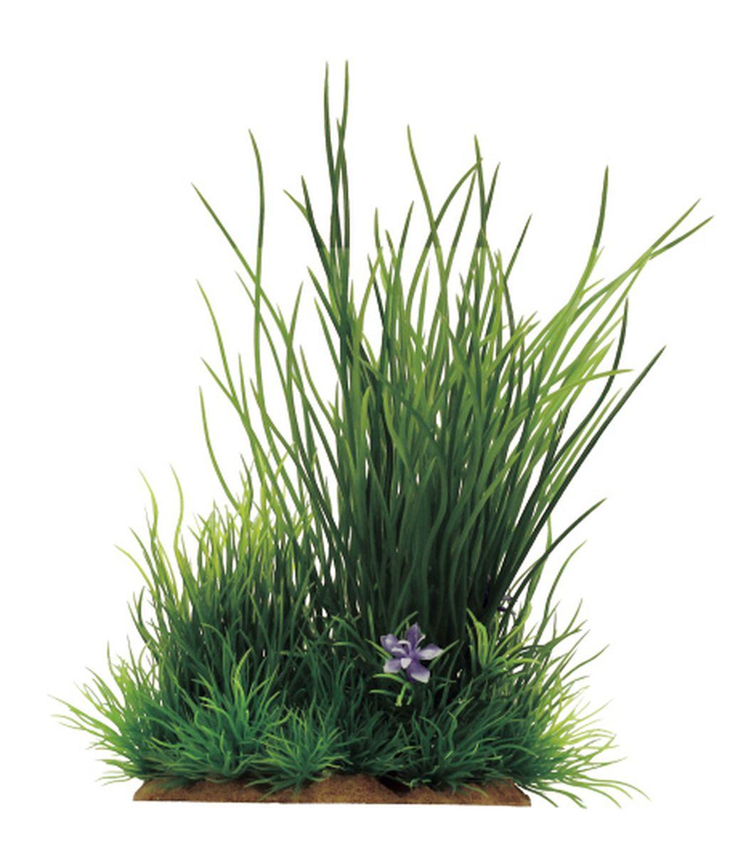 Растение для аквариума ArtUniq Валлиснерия, 13 x 10 x 20 смART-1130604Растение для аквариума ArtUniq Валлиснерия, 13 x 10 x 20 см