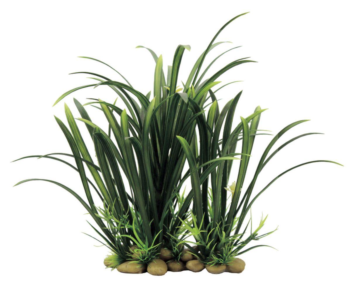 Растение для аквариума ArtUniq Офиопогон, 21 x 16 x 8 смART-1130605Растение для аквариума ArtUniq Офиопогон, 21 x 16 x 8 см
