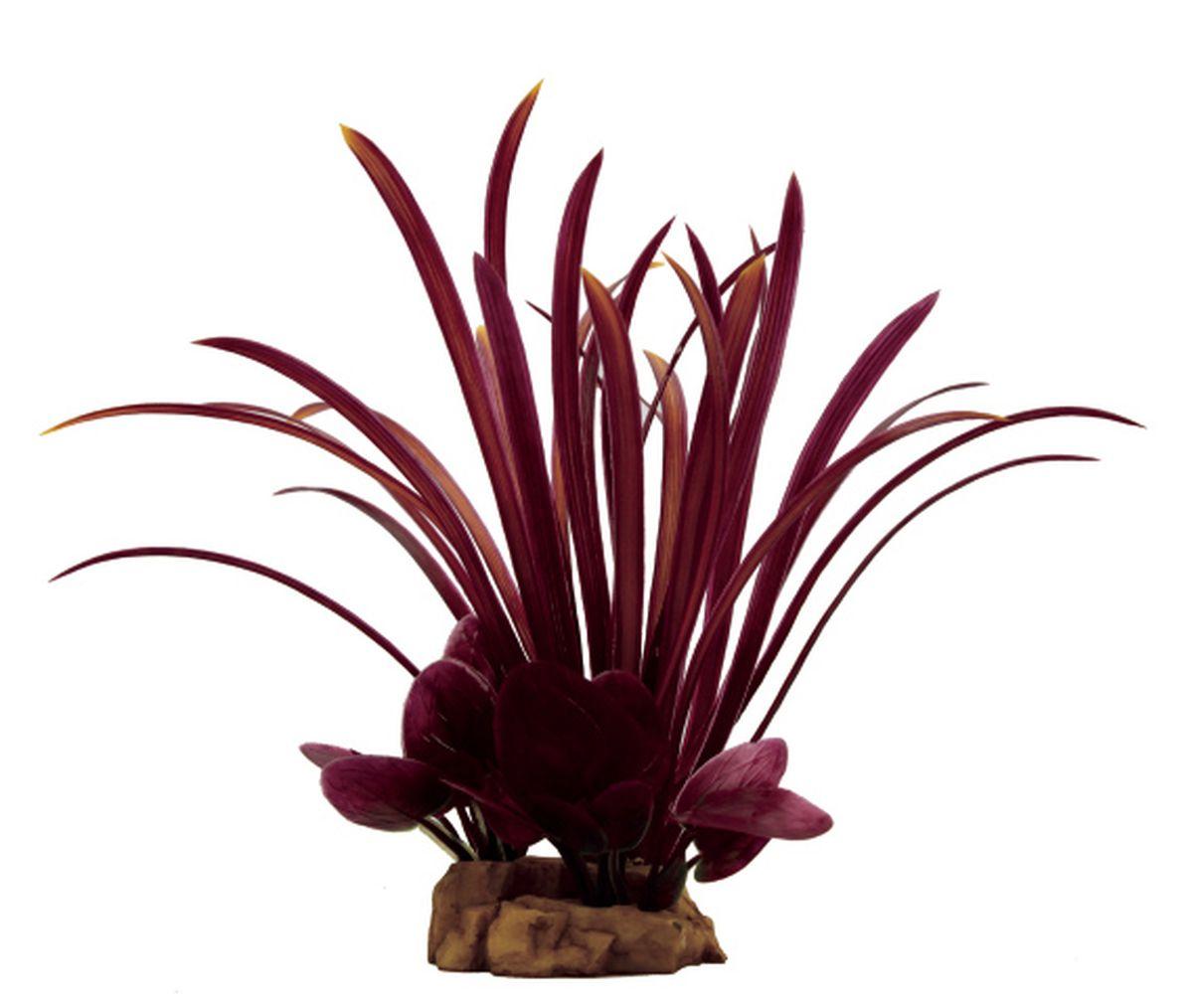 Растение для аквариума ArtUniq Офиопогон красный, 15 x 12 x 23 смART-1130606Растение для аквариума ArtUniq Офиопогон красный, 15 x 12 x 23 см