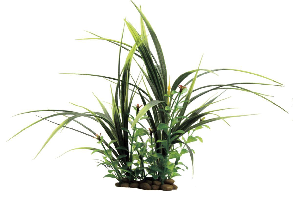 Композиция из растений для аквариума ArtUniq Акорус с растениями, 26 x 15 x 28 смART-1130607Композиция из растений для аквариума ArtUniq Акорус с растениями, 26 x 15 x 28 см