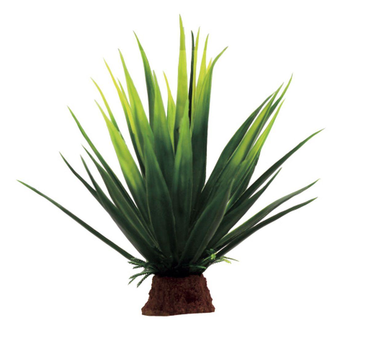 Растение для аквариума ArtUniq Агава, 13 x 13 x 16 смART-1130707Растение для аквариума ArtUniq Агава, 13 x 13 x 16 см