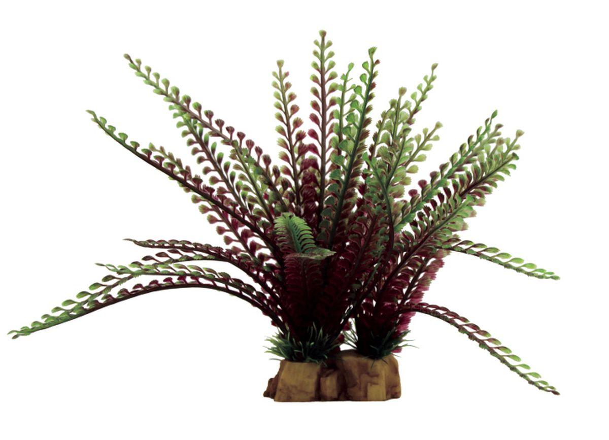 Растение для аквариума ArtUniq Гигрофила перистонадрезанная, 16 x 13 x 22 смART-1130801Растение для аквариума ArtUniq Гигрофила перистонадрезанная, 16 x 13 x 22 см