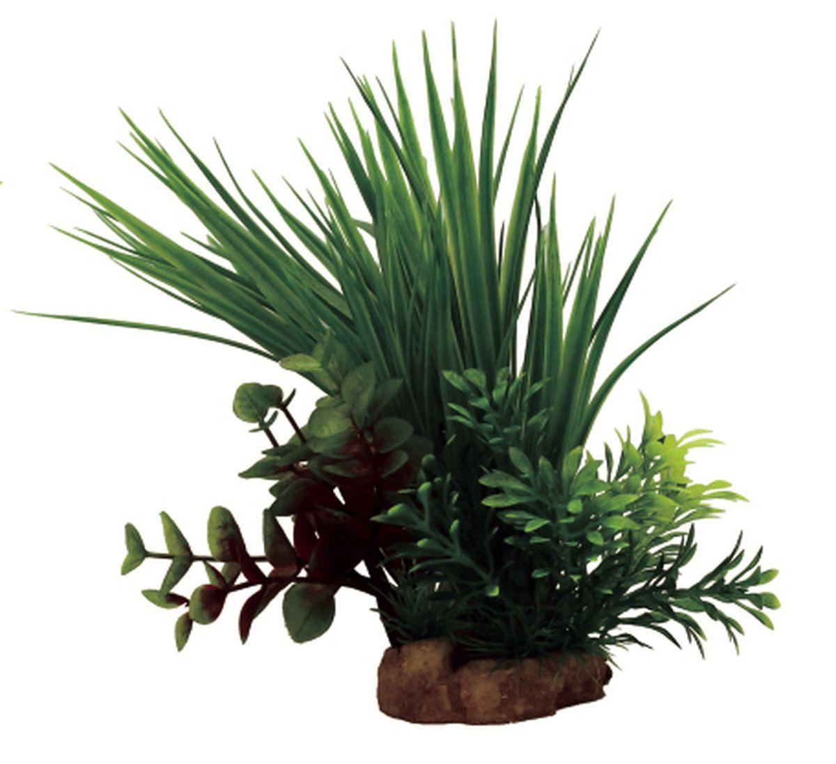 Композиция из растений для аквариума ArtUniq Акорус, 14 x 13 x 22 смART-1130804Композиция из растений для аквариума ArtUniq Акорус, 14 x 13 x 22 см
