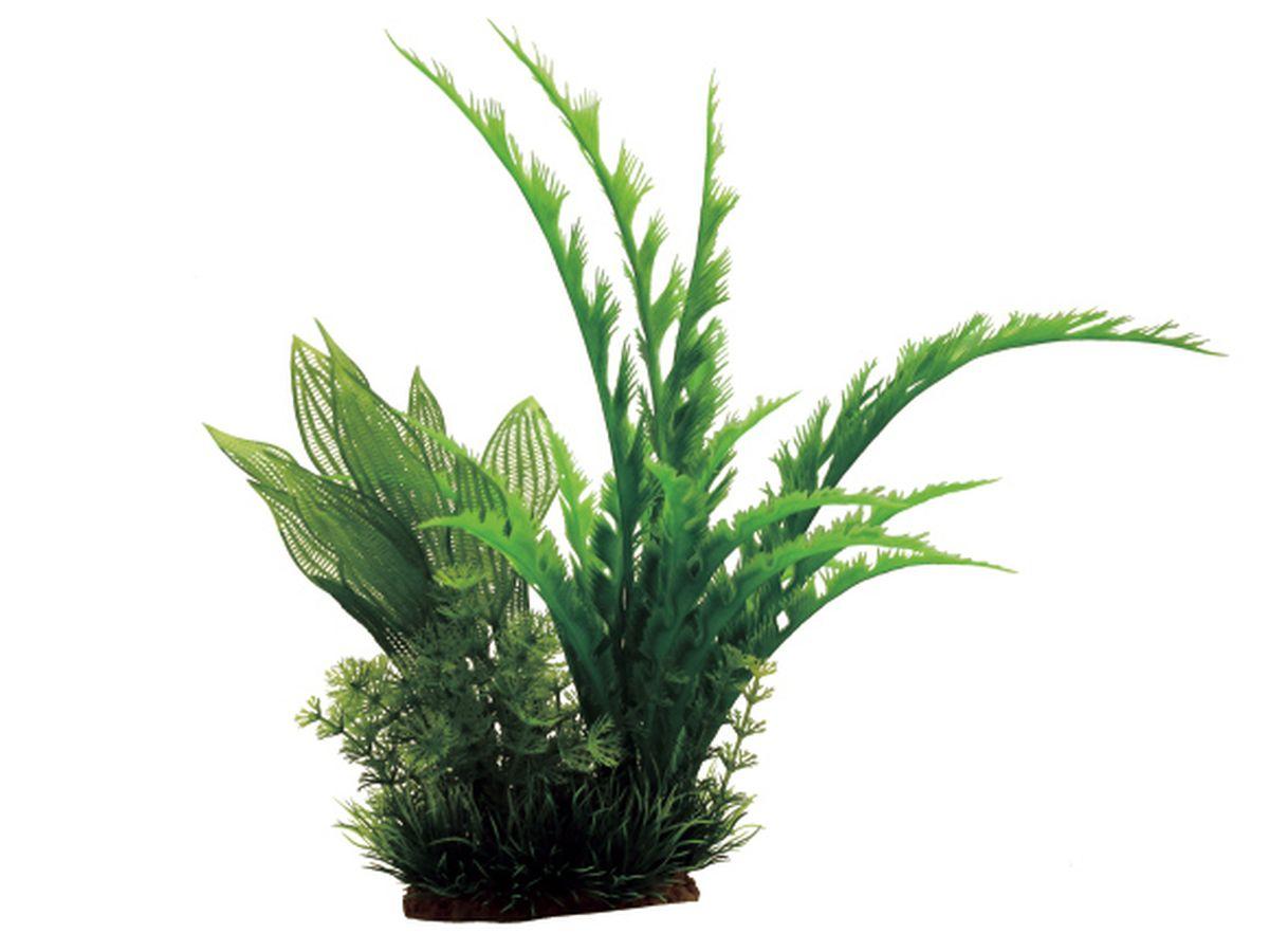 Композиция из растений для аквариума ArtUniq Дизиготека, 22 x 18 x 31 смART-1130806Композиция из растений для аквариума ArtUniq Дизиготека, 22 x 18 x 31 см