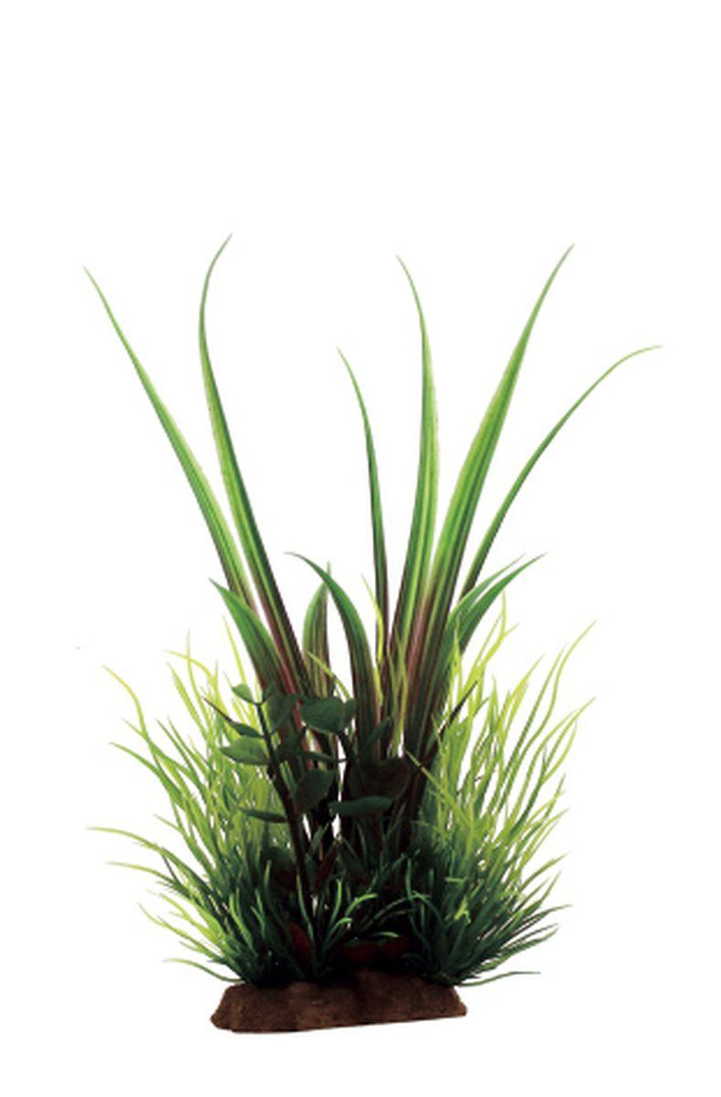 Композиция из растений для аквариума ArtUniq Акорус, 12 x 10 x 20 смART-1130810Композиция из растений для аквариума ArtUniq Акорус, 12 x 10 x 20 см