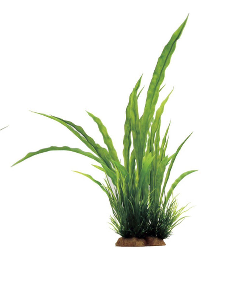 Композиция из растений для аквариума ArtUniq Криптокорина курчавая, 12 x 10 x 33 смART-1130815Композиция из растений для аквариума ArtUniq Криптокорина курчавая, 12 x 10 x 33 см