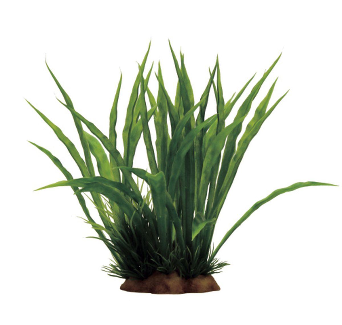 Растение для аквариума ArtUniq Криптокорина, 15 x 13 x 17 смART-1130902Растение для аквариума ArtUniq Криптокорина, 15 x 13 x 17 см