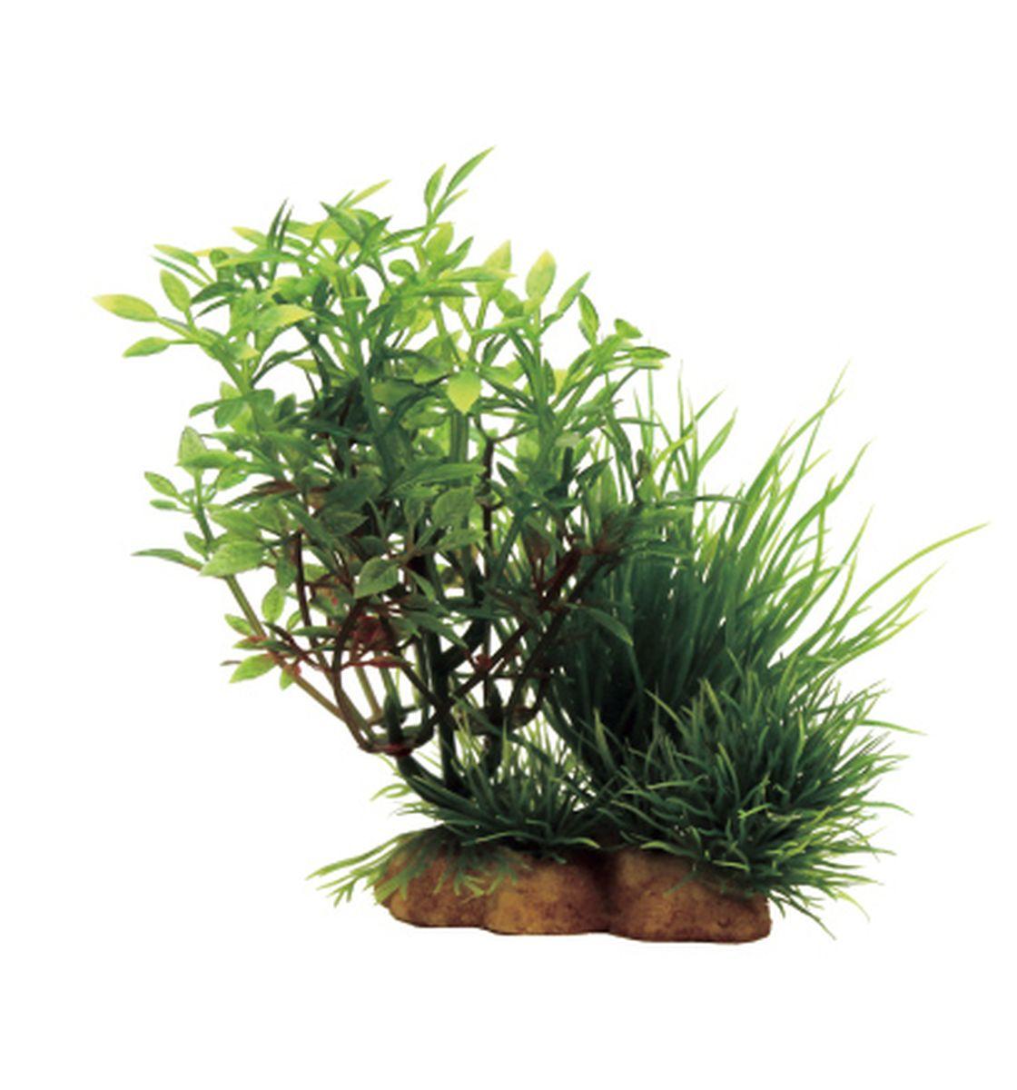 Композиция из растений для аквариума ArtUniq Микрантемум, 12 x 5 x 12 смART-1130907Композиция из растений для аквариума ArtUniq Микрантемум, 12 x 5 x 12 см