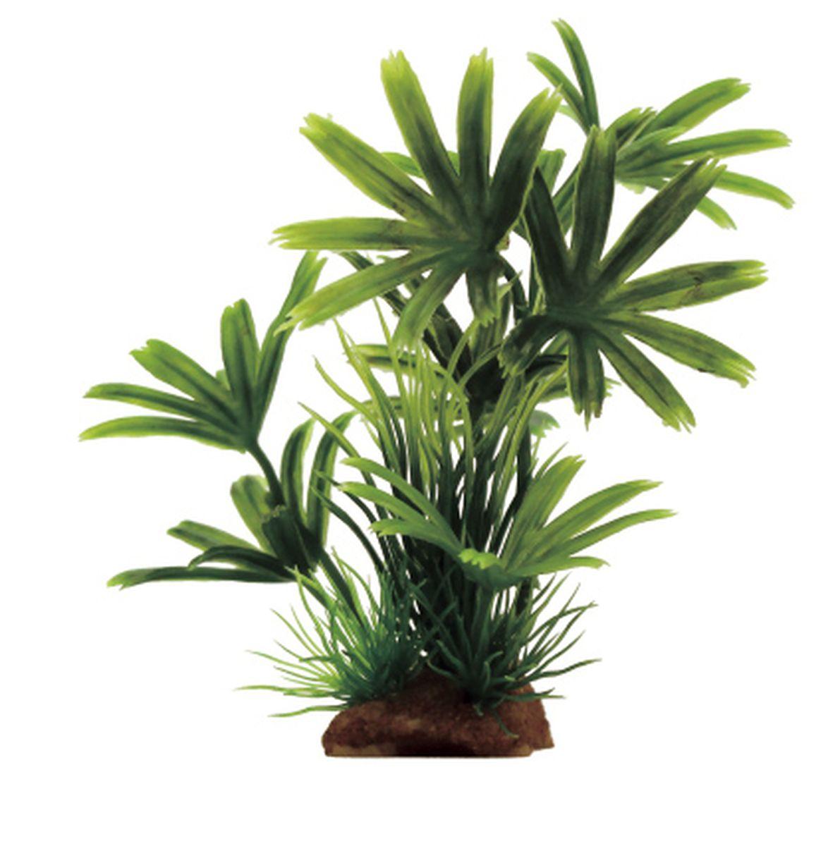 Композиция из растений для аквариума ArtUniq Пальма зеленая, 13 x 5 x 15 смART-1130911Композиция из растений для аквариума ArtUniq Пальма зеленая, 13 x 5 x 15 см