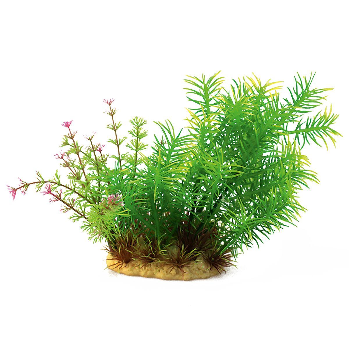 Растение для аквариума ArtUniq Погостемон Эректус, высота 15 смART-1140104Растение для аквариума ArtUniq Погостемон Эректус, высота 15 см
