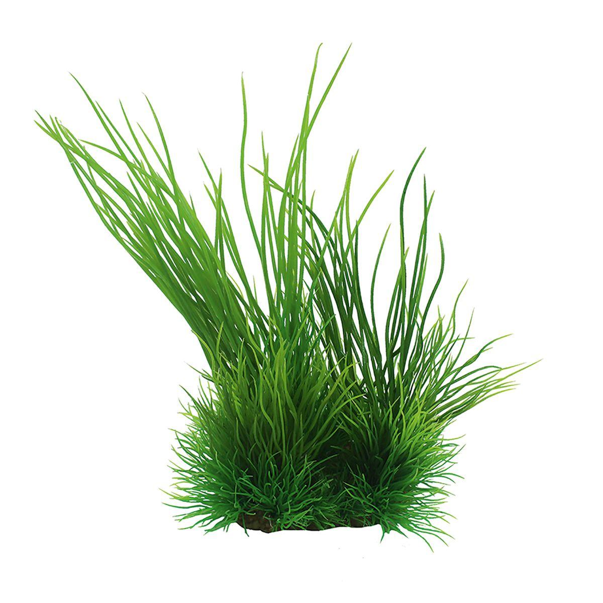 Растение для аквариума ArtUniq Валлиснерия, высота 15 смART-1140106Растение для аквариума ArtUniq Валлиснерия, высота 15 см