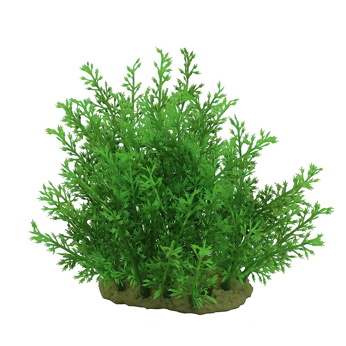 Растение для аквариума ArtUniq Папортник индийский, высота 15 смART-1140107Растение для аквариума ArtUniq Папортник индийский, высота 15 см