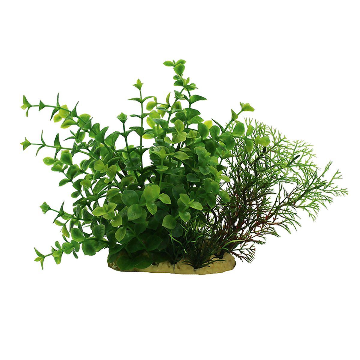 Растение для аквариума ArtUniq Людвигия зеленая, высота 15 смART-1140108Растение для аквариума ArtUniq Людвигия зеленая, высота 15 см