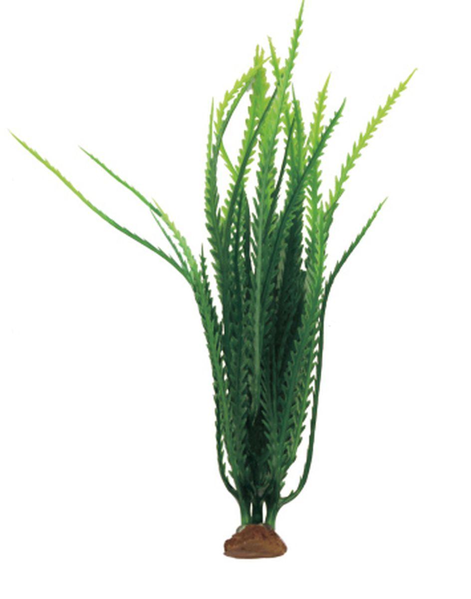 Растение для аквариума ArtUniq Гигрофила перистонадрезанная темно-зеленая, 6 x 6 x 19 смART-1140507Растение для аквариума ArtUniq Гигрофила перистонадрезанная темно-зеленая, 6 x 6 x 19 см