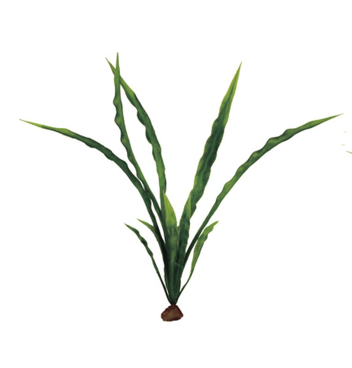 Растение для аквариума ArtUniq Криптокорина курчавая, 6 x 6 x 20 смART-1140509Растение для аквариума ArtUniq Криптокорина курчавая, 6 x 6 x 20 см