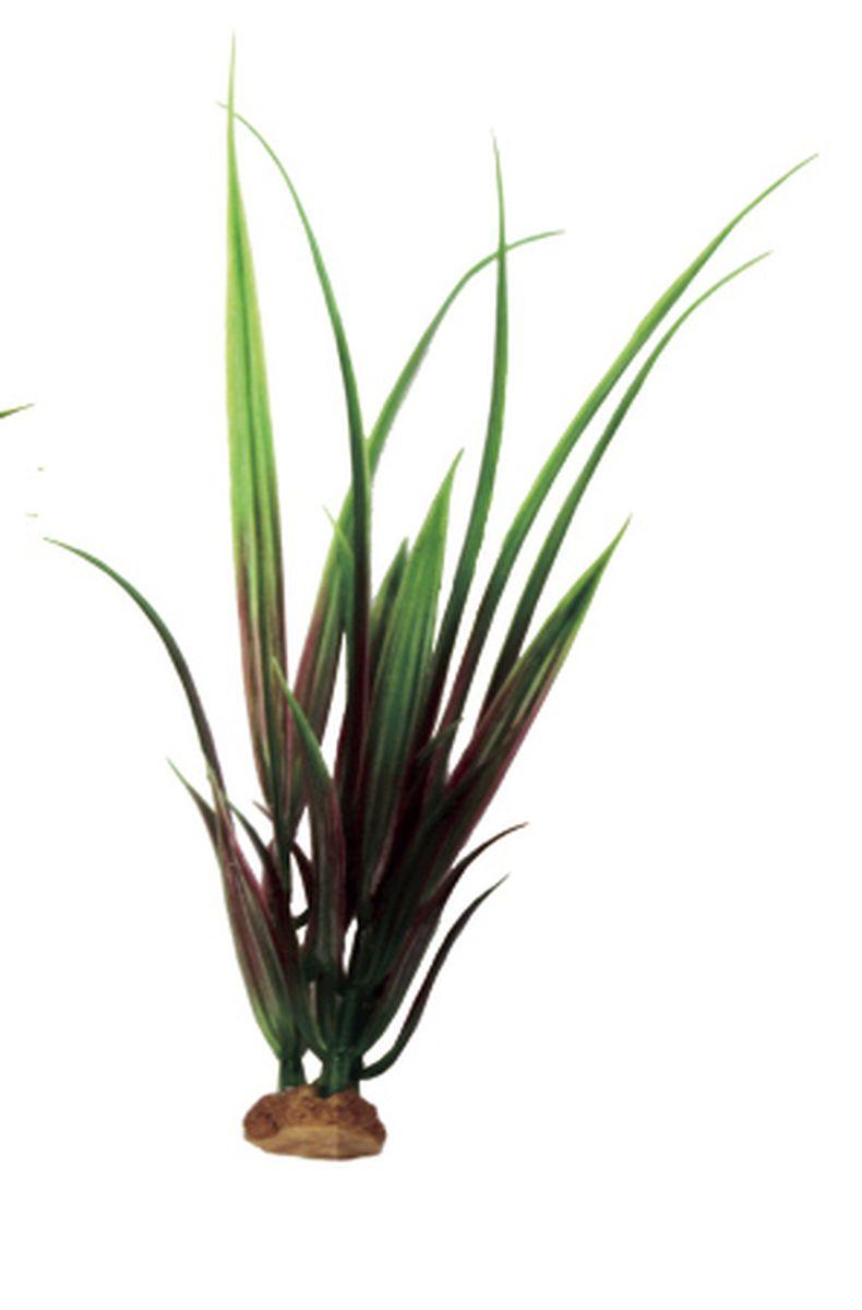 Растение для аквариума ArtUniq Акорус красно-зеленый, 6 x 6 x 19 смART-1140510Растение для аквариума ArtUniq Акорус красно-зеленый, 6 x 6 x 19 см