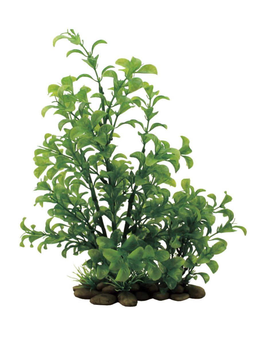 Растение для аквариума ArtUniq Людвигия зеленая, высота 38 смART-1150106Растение для аквариума ArtUniq Людвигия зеленая, высота 38 см