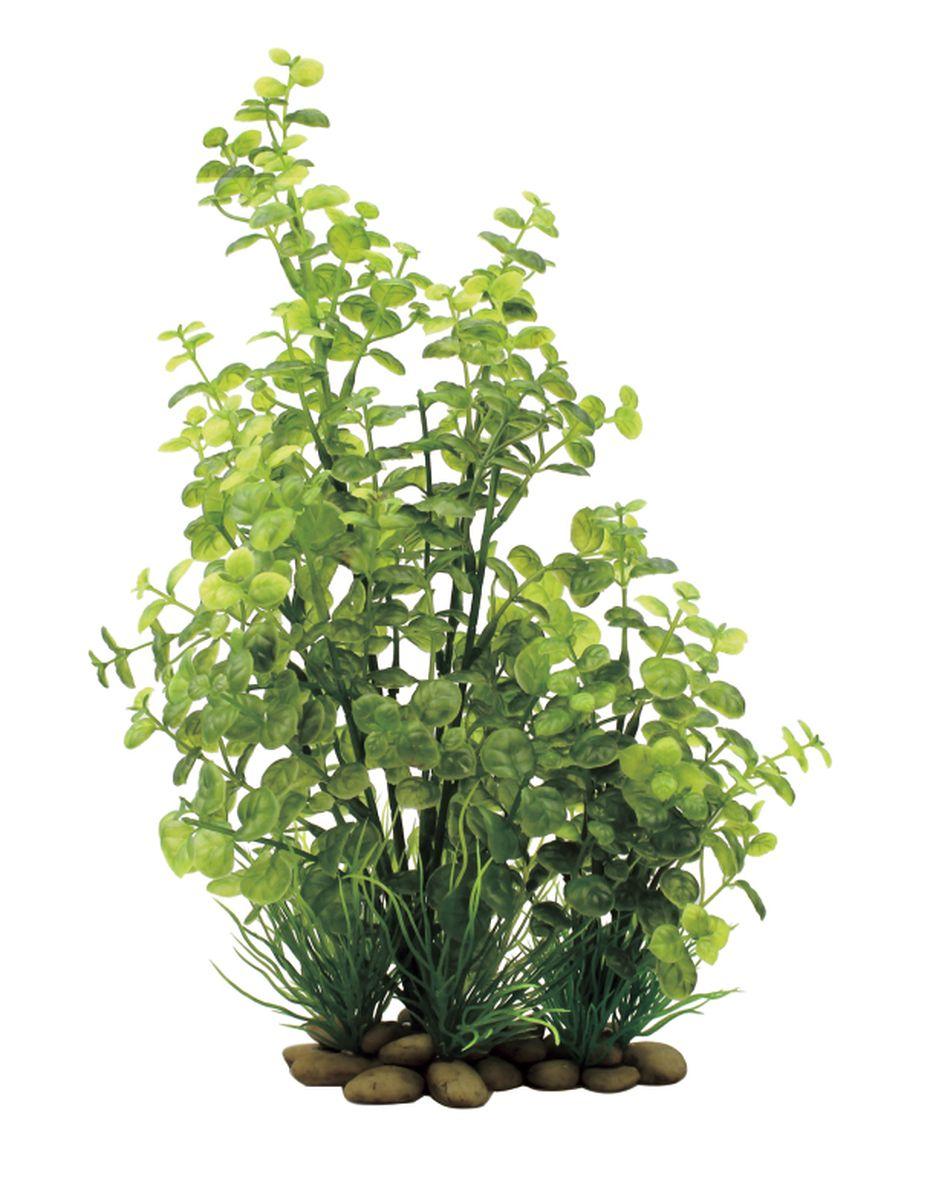 Растение для аквариума ArtUniq Кардамин, высота 38 смART-1150107Растение для аквариума ArtUniq Кардамин, высота 38 см