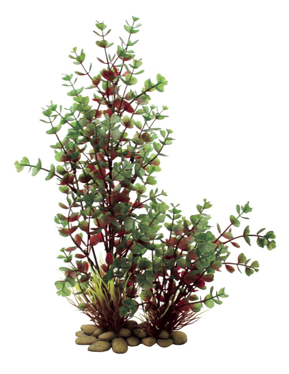 Растение для аквариума ArtUniq Бакопа красно-зеленая, высота 38 смART-1150108Растение для аквариума ArtUniq Бакопа красно-зеленая, высота 38 см
