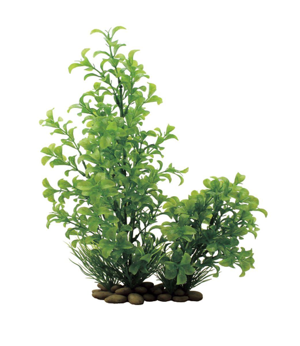 Растение для аквариума ArtUniq Людвигия зеленая, высота 30 смART-1150206Растение для аквариума ArtUniq Людвигия зеленая, высота 30 см