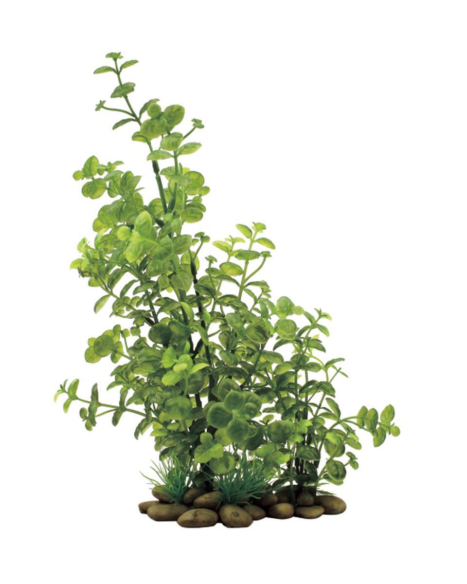 Растение для аквариума ArtUniq Кардамин, высота 30 смART-1150207Растение для аквариума ArtUniq Кардамин, высота 30 см
