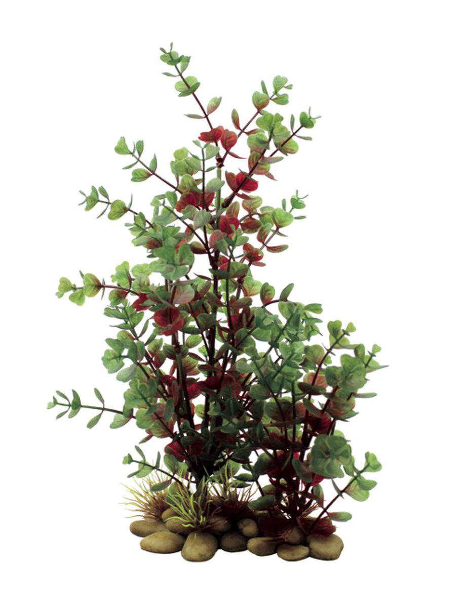Растение для аквариума ArtUniq Бакопа красно-зеленая, высота 30 смART-1150208Растение для аквариума ArtUniq Бакопа красно-зеленая, высота 30 см