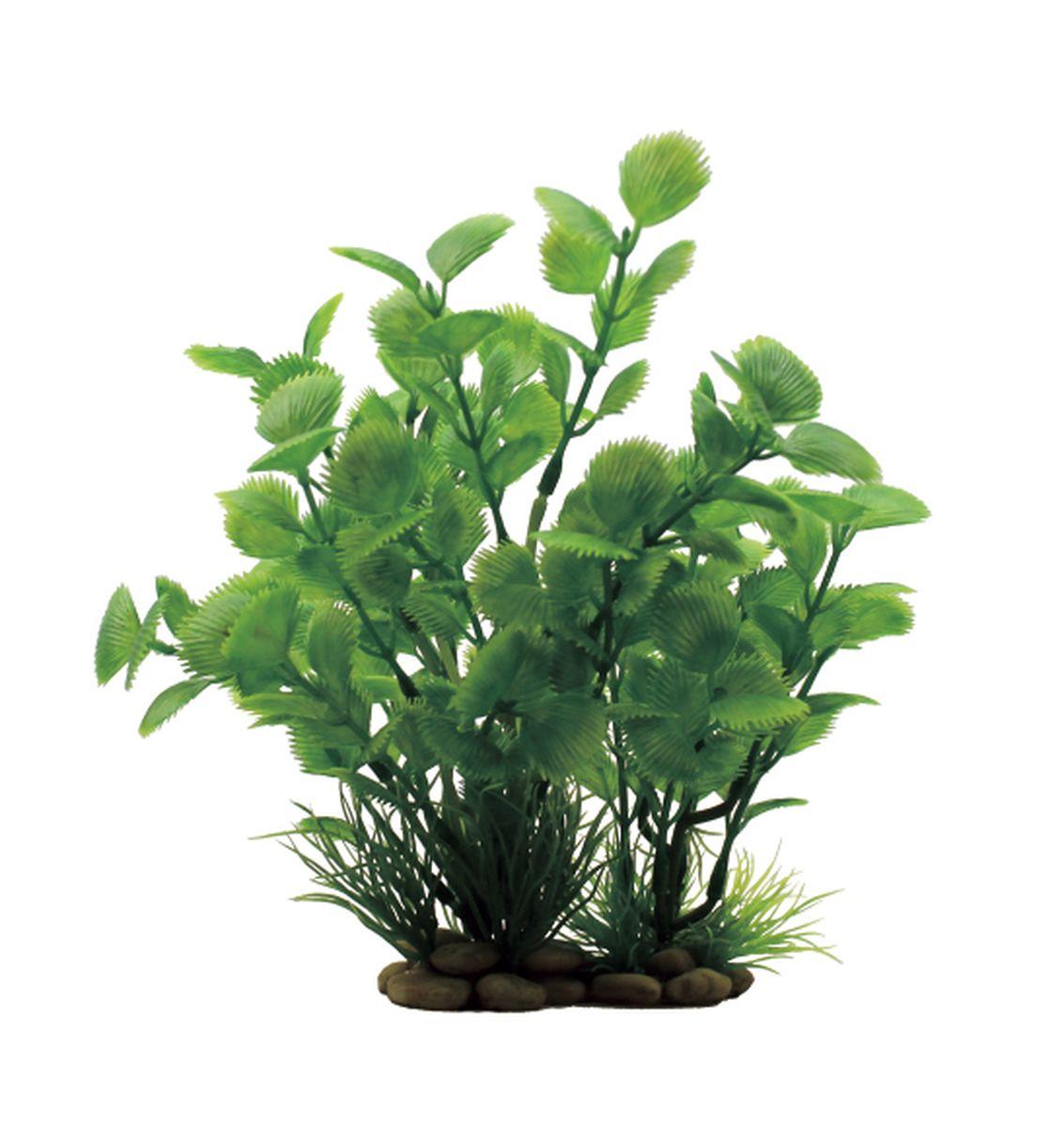 Растение для аквариума ArtUniq Ливистона , высота 20 смART-1150301Растение для аквариума ArtUniq Ливистона , высота 20 см