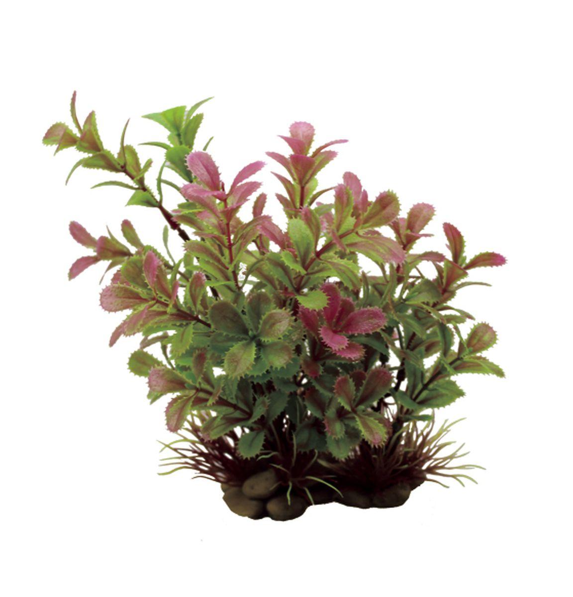 Растение для аквариума ArtUniq Прозерпинака, высота 20 смART-1150302Растение для аквариума ArtUniq Прозерпинака, высота 20 см
