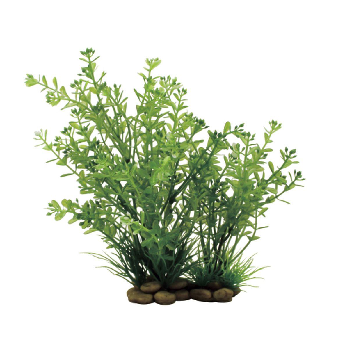 Растение для аквариума ArtUniq Ротала, высота 20 смART-1150304Растение для аквариума ArtUniq Ротала, высота 20 см