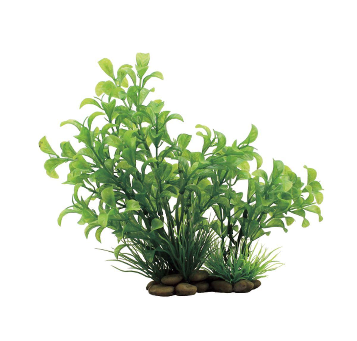 Растение для аквариума ArtUniq Людвигия зеленая, высота 20 смART-1150306Растение для аквариума ArtUniq Людвигия зеленая, высота 20 см