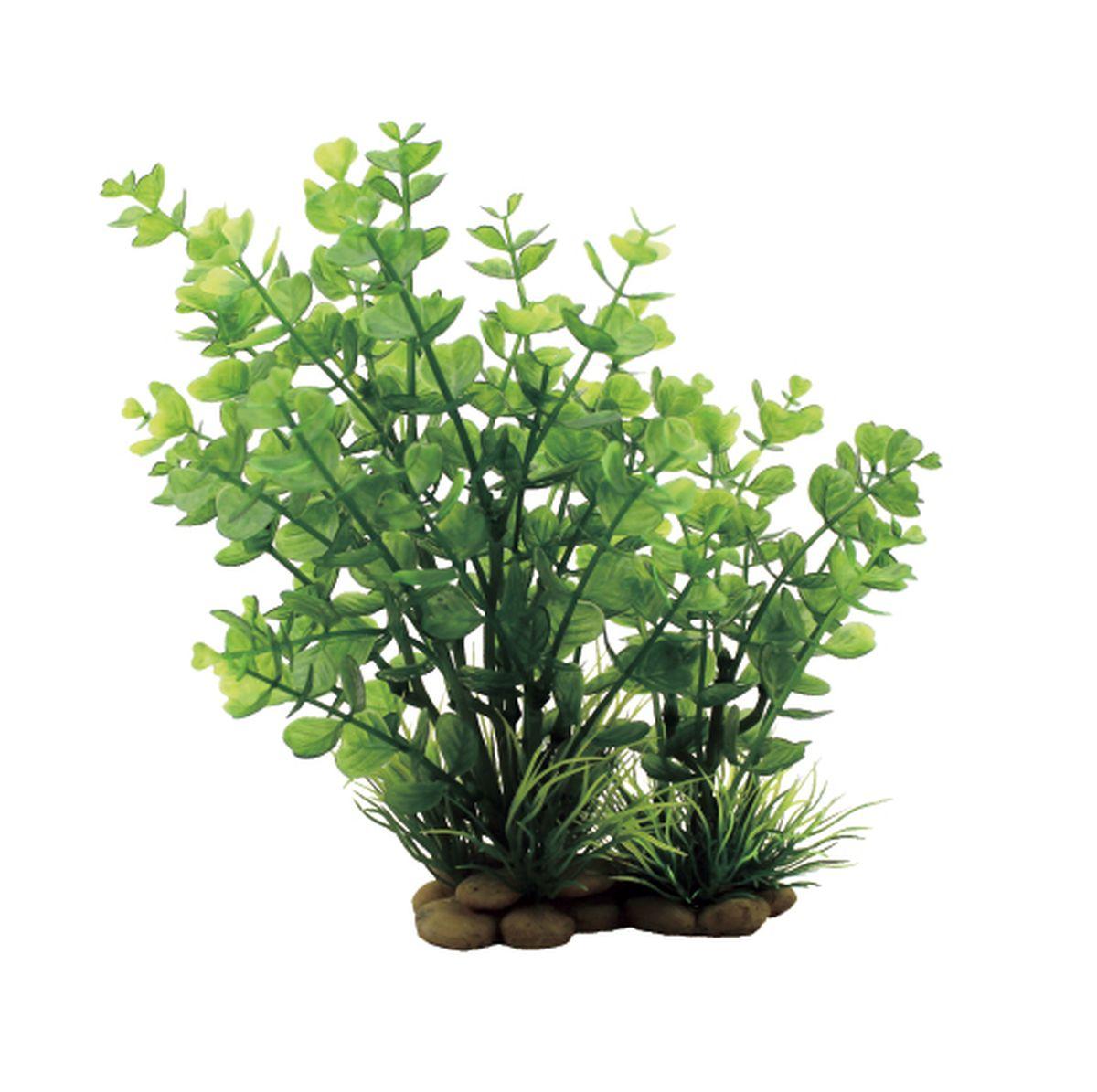 Растение для аквариума ArtUniq Бакопа красно-зеленая, высота 20 смART-1150308Растение для аквариума ArtUniq Бакопа красно-зеленая, высота 20 см