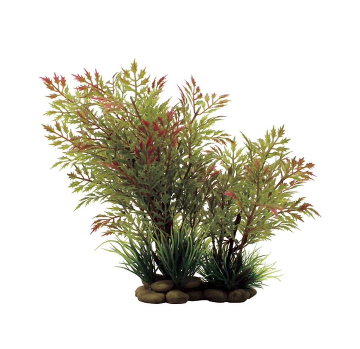 Растение для аквариума ArtUniq Папоротник водяной красно-зеленый, высота 20 смART-1150309Растение для аквариума ArtUniq Папоротник водяной красно-зеленый, высота 20 см
