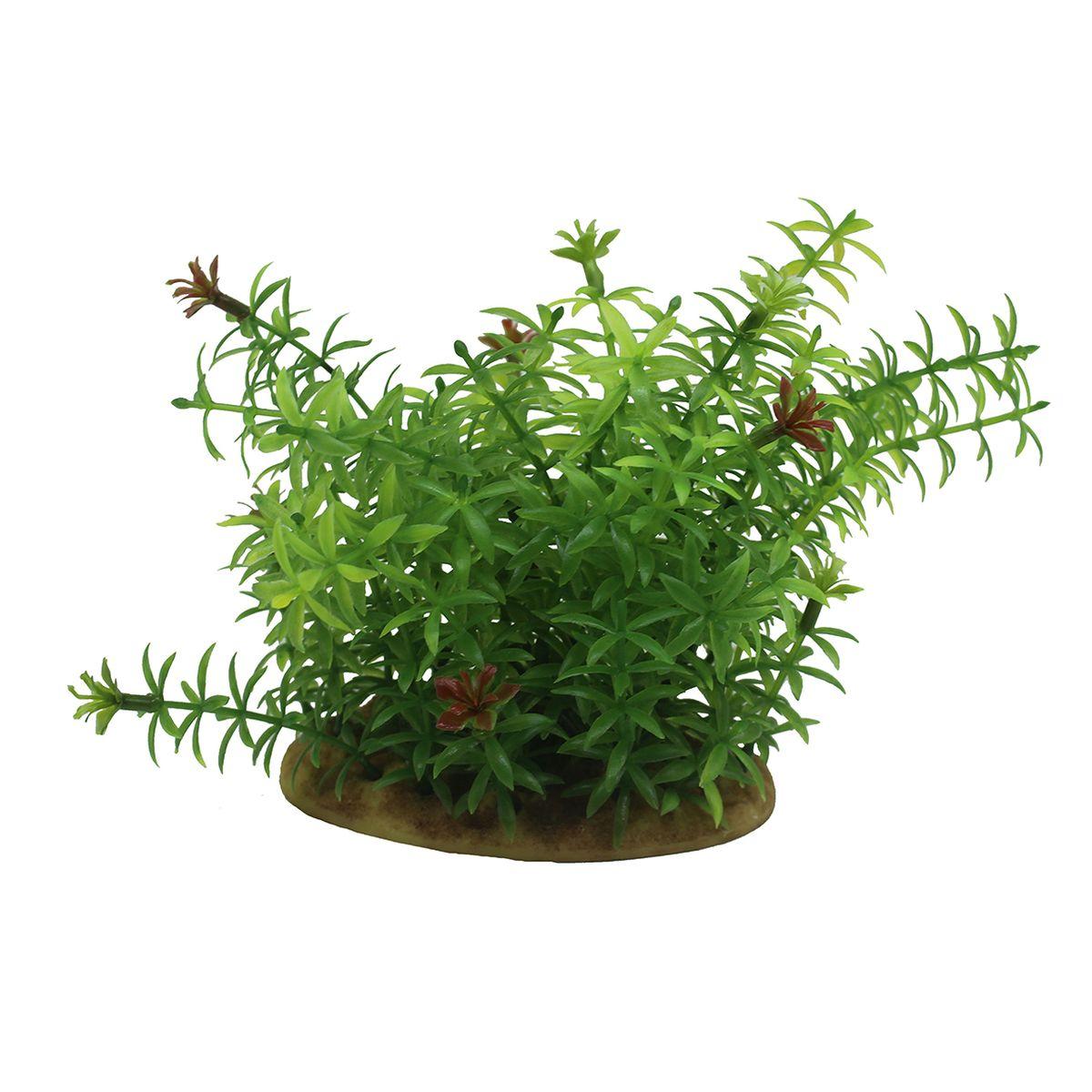 Растение для аквариума ArtUniq Элодея, высота 15 смART-1160101Растение для аквариума ArtUniq Элодея, высота 15 см