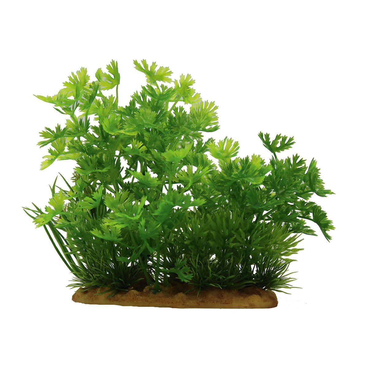 Растение для аквариума ArtUniq Лютик водный, высота 15 смART-1160102Растение для аквариума ArtUniq Лютик водный, высота 15 см