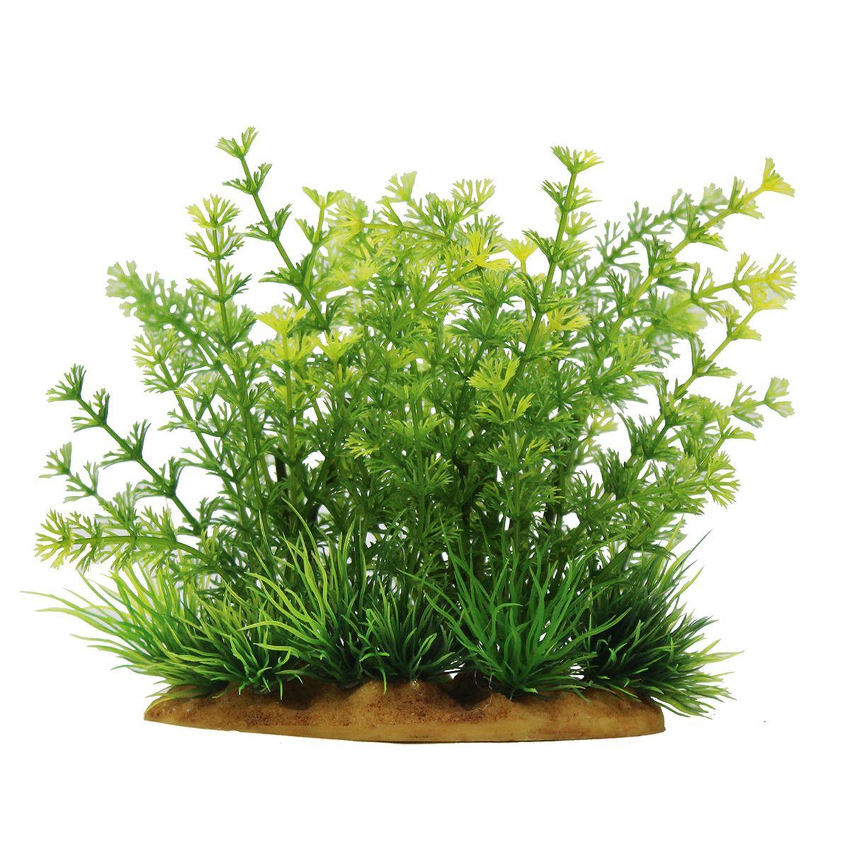 Растение для аквариума ArtUniq Лимнофила сидячецветковая, высота 15 смART-1160104Растение для аквариума ArtUniq Лимнофила сидячецветковая, высота 15 см