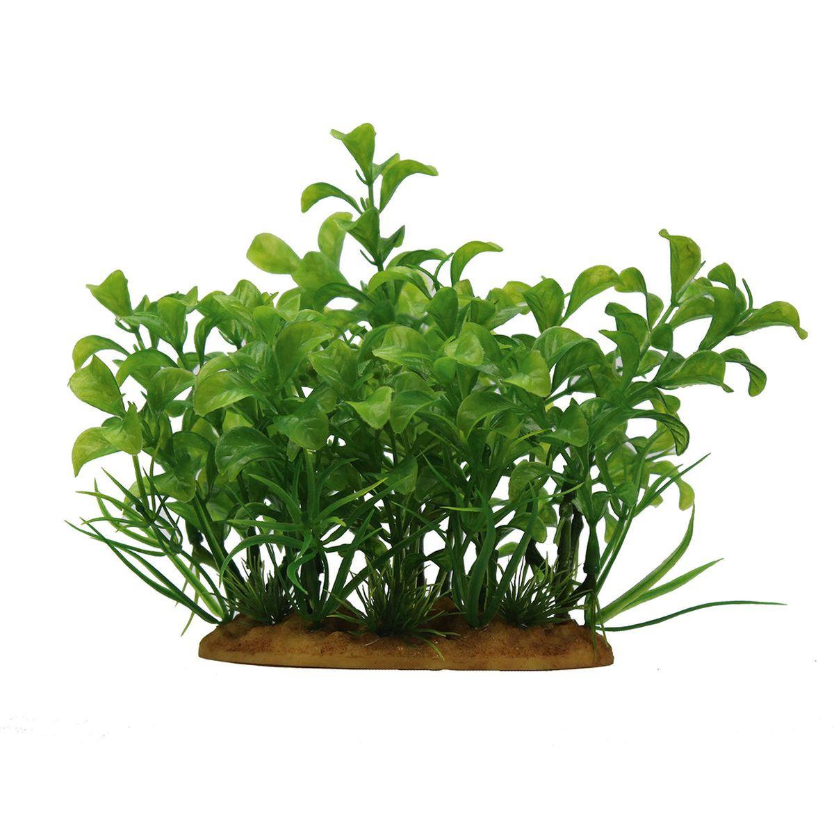 Растение для аквариума ArtUniq Людвигия зеленая, высота 15 смART-1160105Растение для аквариума ArtUniq Людвигия зеленая, высота 15 см