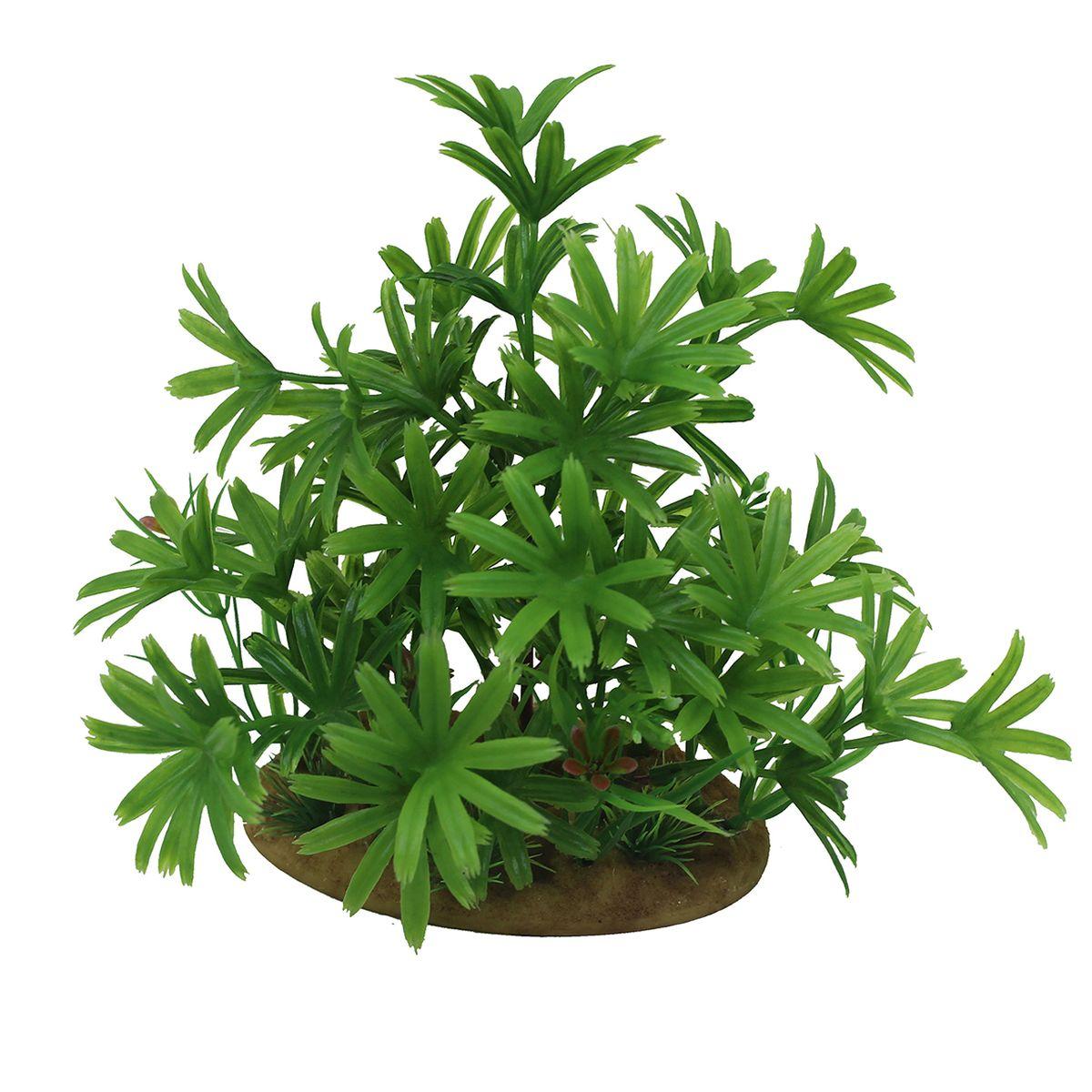 Растение для аквариума ArtUniq Бамбуза зеленая, высота 15 смART-1160107Растение для аквариума ArtUniq Бамбуза зеленая, высота 15 см